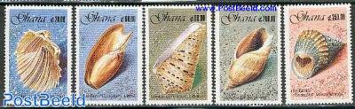 Shells 5v