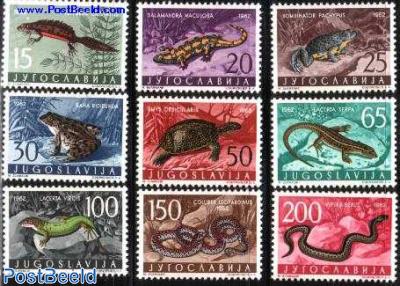 Reptiles 9v