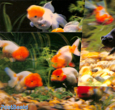3D-Postcard set, Goldfish (4 cards)